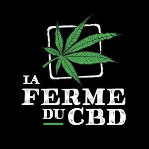 logo_LFDCBD (1)